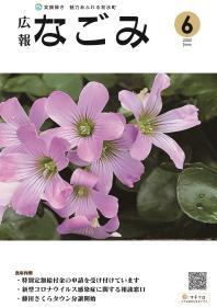 花が咲いている画像