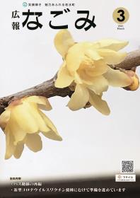 蝋梅の花が咲いている写真