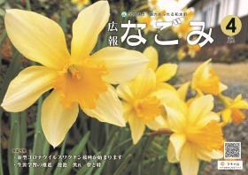 水仙の花が咲いている写真